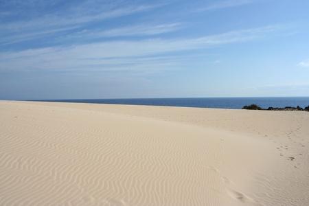 View of Fuerteventura Dunes ( Fuerteventura, Canary Islands, Spain)