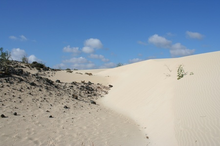 View of Fuerteventura Dunes   Canary Islands, Spain