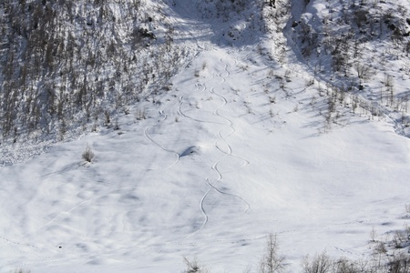 Tracks of Backcountry skiers on snow photo