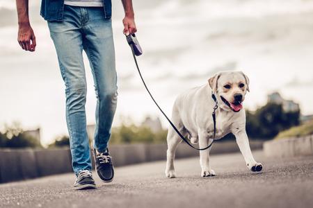 ラブラドールと屋外でイケメンの若い男の画像をトリミングしました。彼の犬が付いている都市の中を歩く男。