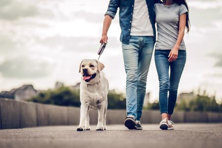 L'immagine ritagliata della coppia romantica è in una passeggiata in città con il loro cane labrador. La bella giovane donna e l'uomo bello stanno divertendosi all'aperto con golden retriever labrador. Archivio Fotografico - 86209901