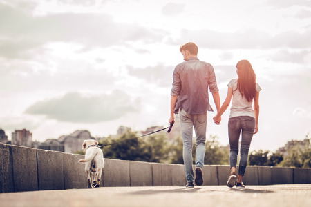 Romantic couple is on a walk in the city with their dog labrador. Beautiful young woman and handsome man are having fun outdoors with golden retriever labrador. Stock Photo