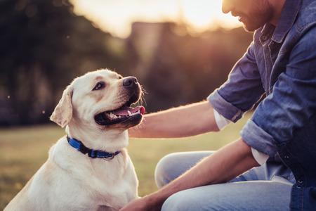 Apuesto joven con labrador al aire libre. Hombre en una hierba verde con perro labrador retriever.