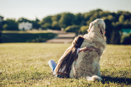Back view of little cute girl is having fun with golden retriever on a green grass. Charming cheerful girl is sitting with dog labrador. 免版税图像