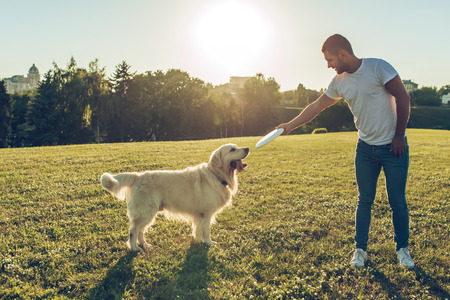 Handsome man with his dog golden retriever outdoors. Labrador playing with his owner on a green grass in sunny day.