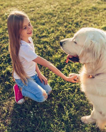Little cute girl is having fun with golden retriever on a green grass. Charming cheerful girl is sitting with dog labrador in park. Giving hand. 写真素材