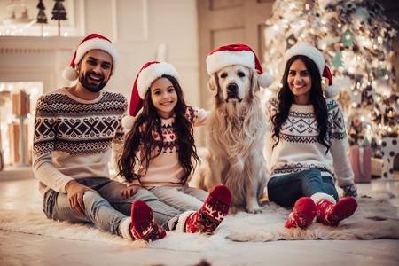 ¡Feliz navidad y próspero año nuevo! La familia feliz con el labrador retriever del perro está esperando el Año Nuevo en los sombreros de Papá Noel mientras que se sienta cerca del árbol de navidad hermoso en casa.