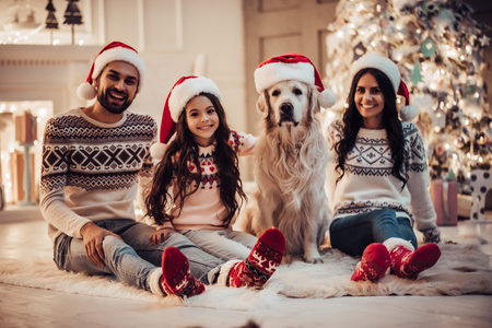 Merry Christmas and Happy New Year! Happy family with dog labrador retriever are waiting for the New Year in Santa hats while sitting near beautiful Christmas tree at home.