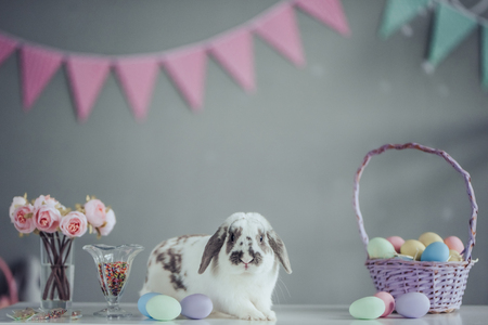 Happy Easter! Cute bunny is sitting on the table with basket full of colorful painted Easter eggs nearby.