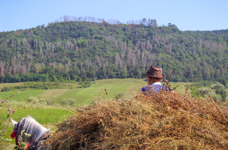 Carrying Hay on Carriot, Traditional Farming