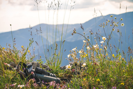 Mountain View Bionoculars and Wild flowers