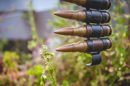 Bullets Belt with Plants Stock Photo
