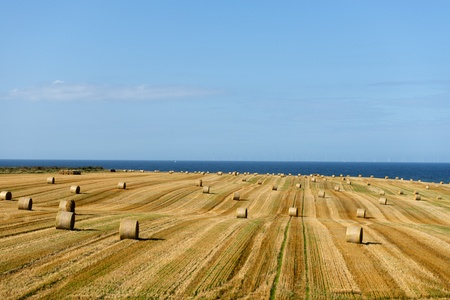 Hay Rolls in fields after harvest looking out to sea Stock Photo