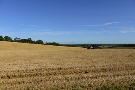 View across a harvested farm field on a sunny day