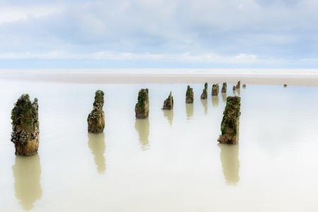 submerged: Submerged posts on beach