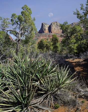 Early morning hiking the trails around the Sedona area, many beautiful vistas are available for viewing and picture taking photo