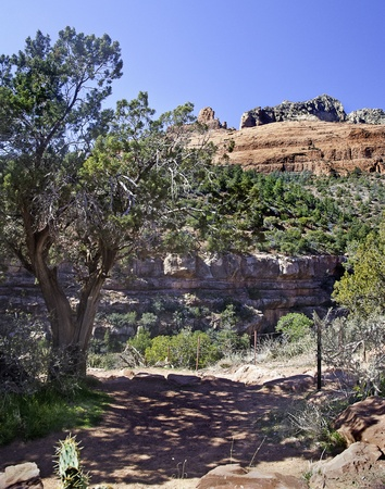 Early morning hiking the trails around the Sedona area, many beautiful vistas are available for viewing and picture taking Stock Photo - 13420789