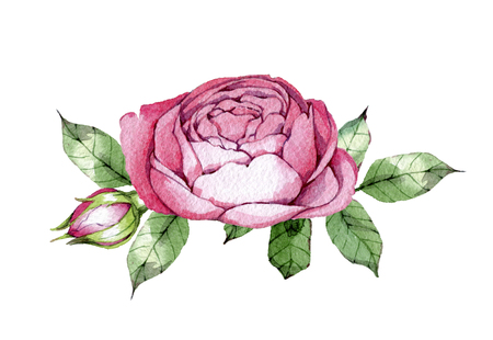 hand drawn drawn watercolor element design element to create postcards, logos, corporate identity and print products Stock Photo
