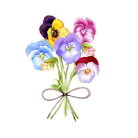 hand drawn watercolor Pansy bouquet