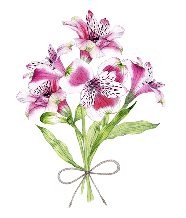 hand drawn watercolor bouquet of flowers of Alstroemeria