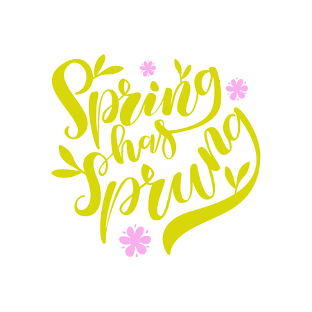 Vector illustration of hand drawn brush lettering quote Spring Has Sprung