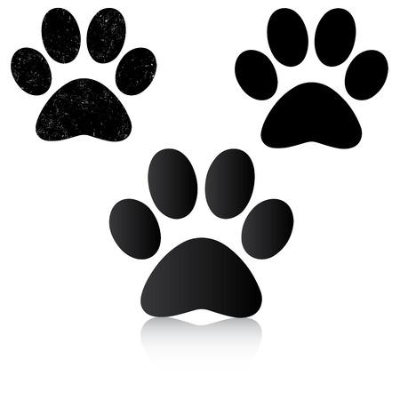 huellas de perro: Impresión de la pata