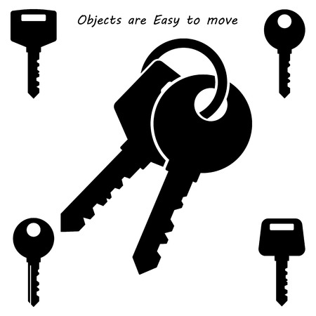 keyring: Key Icon Illustration