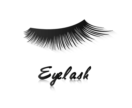 Eye lashes vector icon or logo. Lashes vector