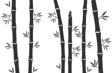 Bamboo tree and Bamboo grass silhouette background vector