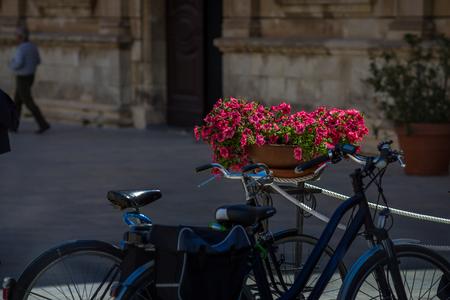 ortigia: Tourist bike with flowers in the backround