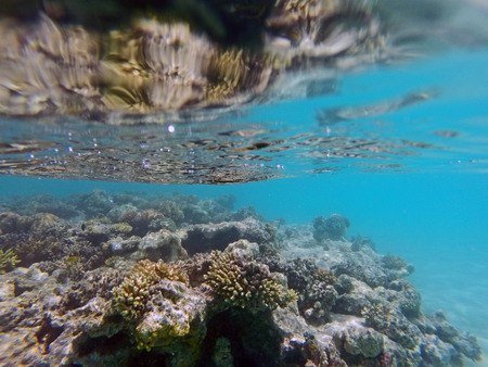 Reflection of a reef on the water surface