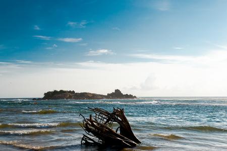 Stuffed tree on the beach Stockfoto