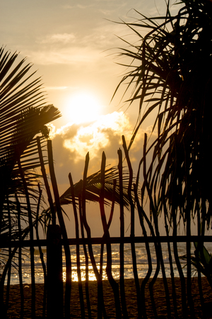 Sunrise behind a wooden fence with palm trees Stockfoto