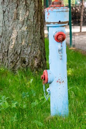 old blue hydrant Stockfoto