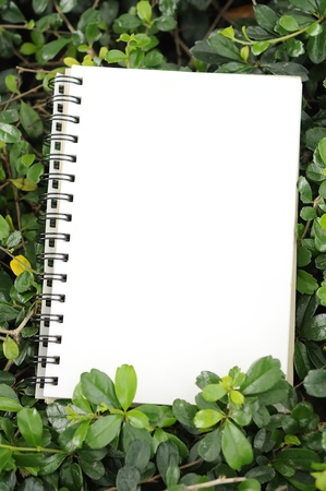 notebook in garden vertical composition