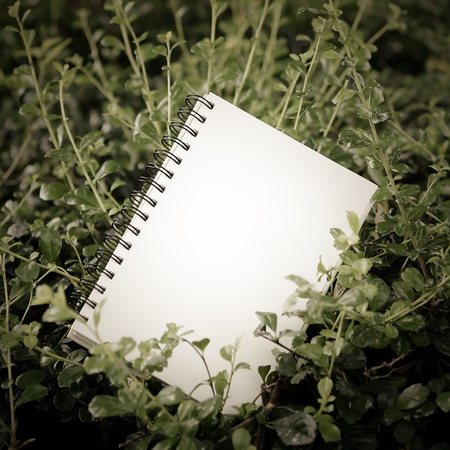 Notebook in garden square composition Stock Photo