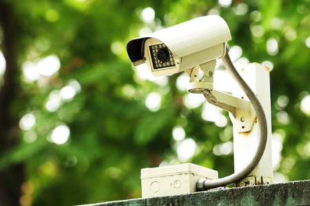 security equipment: CCTV in garden