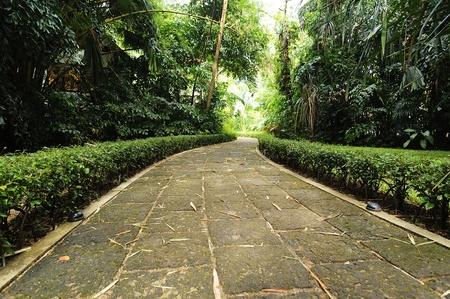 hard way: Walkway at garden tropical style