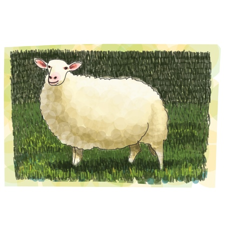 Sheep sketchbook Vector