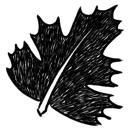 Leaf sketchbook  Vector