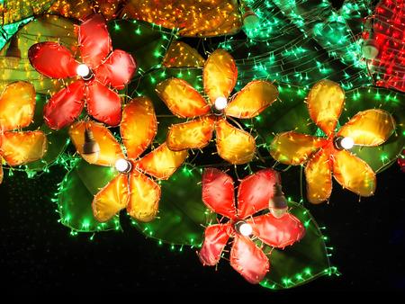 Flower light LED. decoration outdoors photo