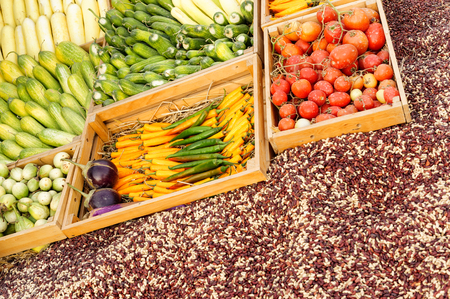 collocation: Fruit and vegetable promotion : Chilli ,Tomato , Cucumber , Nut Stock Photo