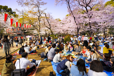 TOKYO JAPAN - MARCH 29, 2018 : Ueno Park, Unidentified tourists visit the cherry blossom. this phenomenon only once year. It is attractive to both Japanese and foreigners, most popular landmarks. Editorial