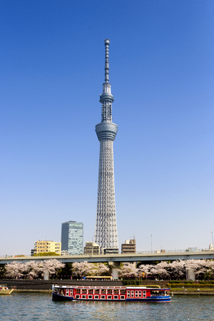 TOKYO JAPAN - MARCH 28, 2018 : Sumida riverside, Tourists use the cruise to see the beauty of the city. Behind is the famous tower building of Tokyo called Skytree. Tokyo's must-see places to visit.