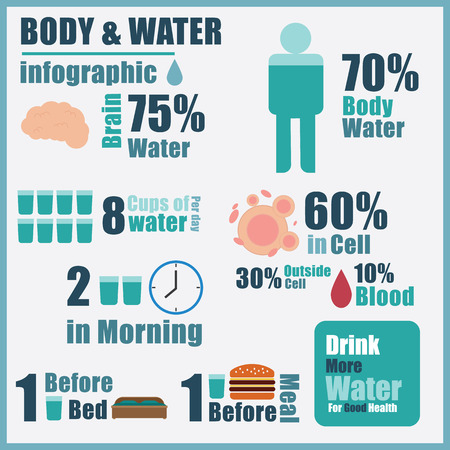 tomando agua: Vector de infograf�a agua corporal