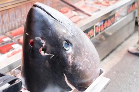 the big fish: big fish head in market