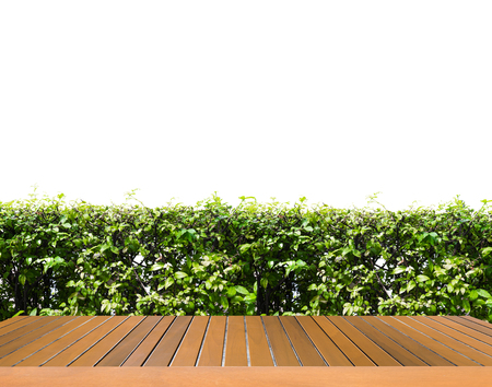 shrubbery: wooden floor with shrubbery, Stock Photo