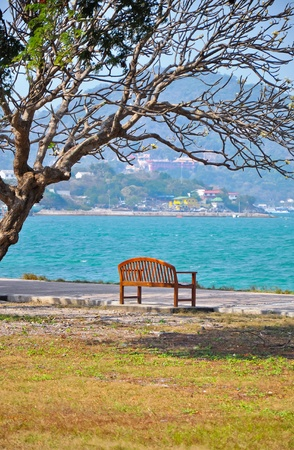 chonburi: A chair  on the seaside with the big tree  at koh srichang,chonburi,thailand Stock Photo