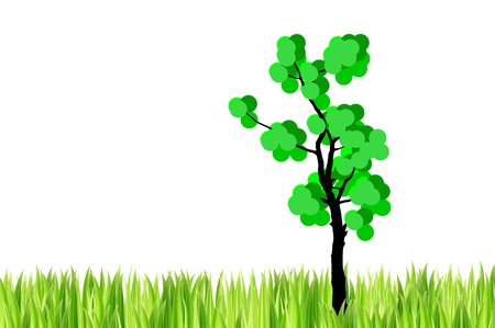 grasses: the tree  and  green grasses on white background