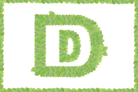 d data: pattern of  leaves letters on white background